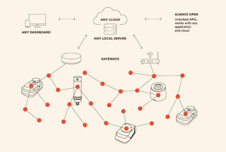 Wirepass Massive网络